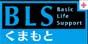 九州、熊本/福岡でAHA-BLSヘルスケアプロバイダーコース/PEARS(ペアーズ)受講ならBLS熊本